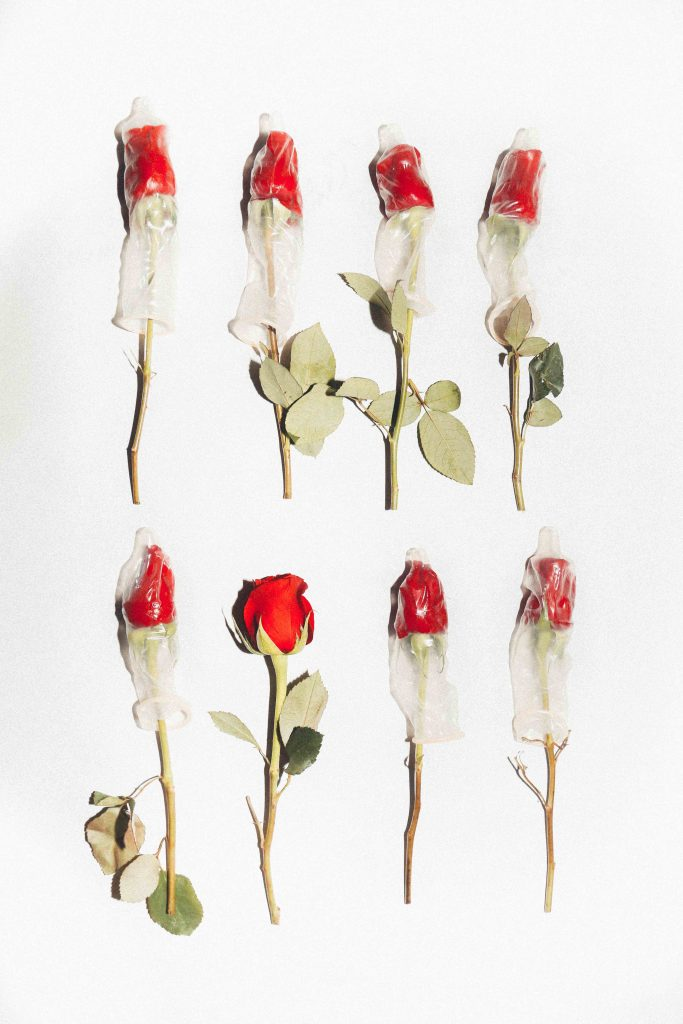 a photo of 8 roses, 7 of them are covered in condoms