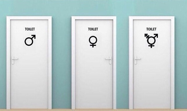 Genderqueer: falling between the boxes