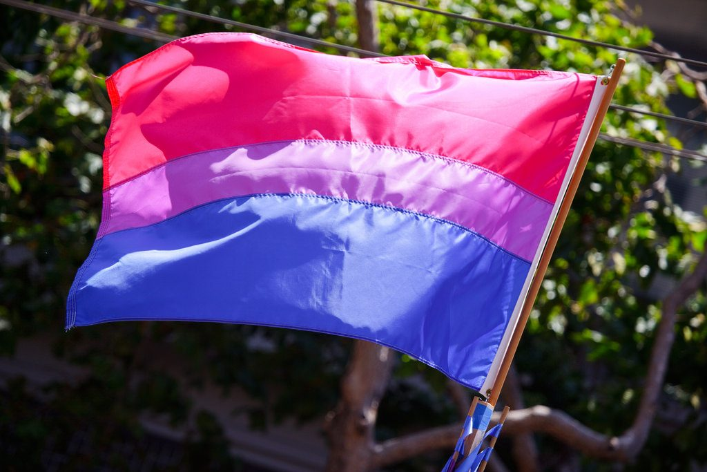 Photograph of the bisexaul flag - pink purple and blue.